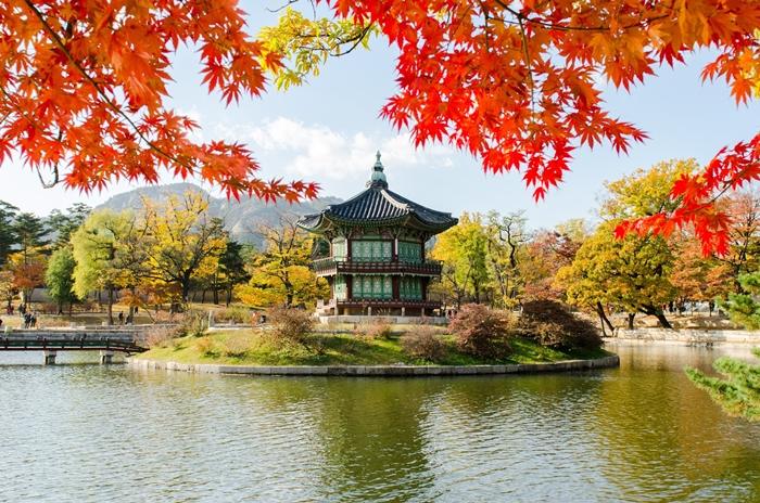 Tháng 10 dừng chân tại Seoul Hàn Quốc